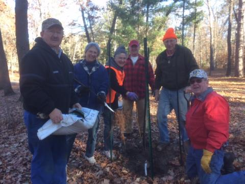 Inspired volunteers plant maple trees at two sites for beauty and forest diversity.